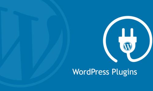 I migliori plugin per WordPress e Craft CMS – 2021 Update