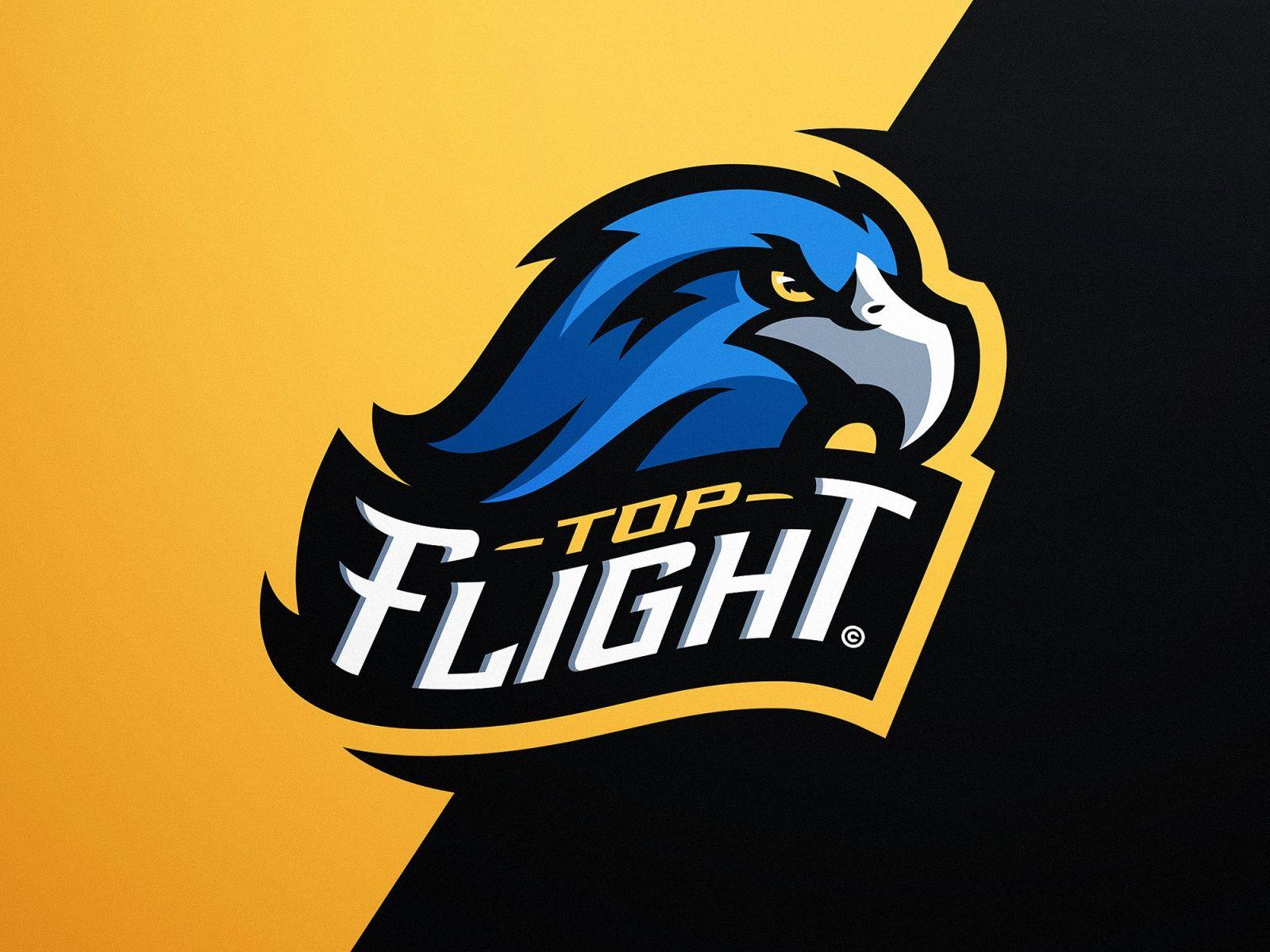 logo top flight