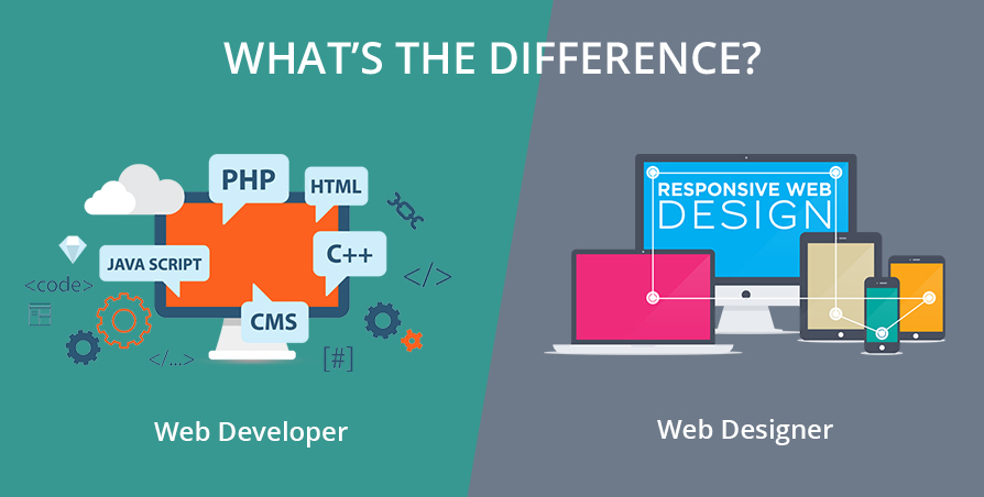 web designer e web developers