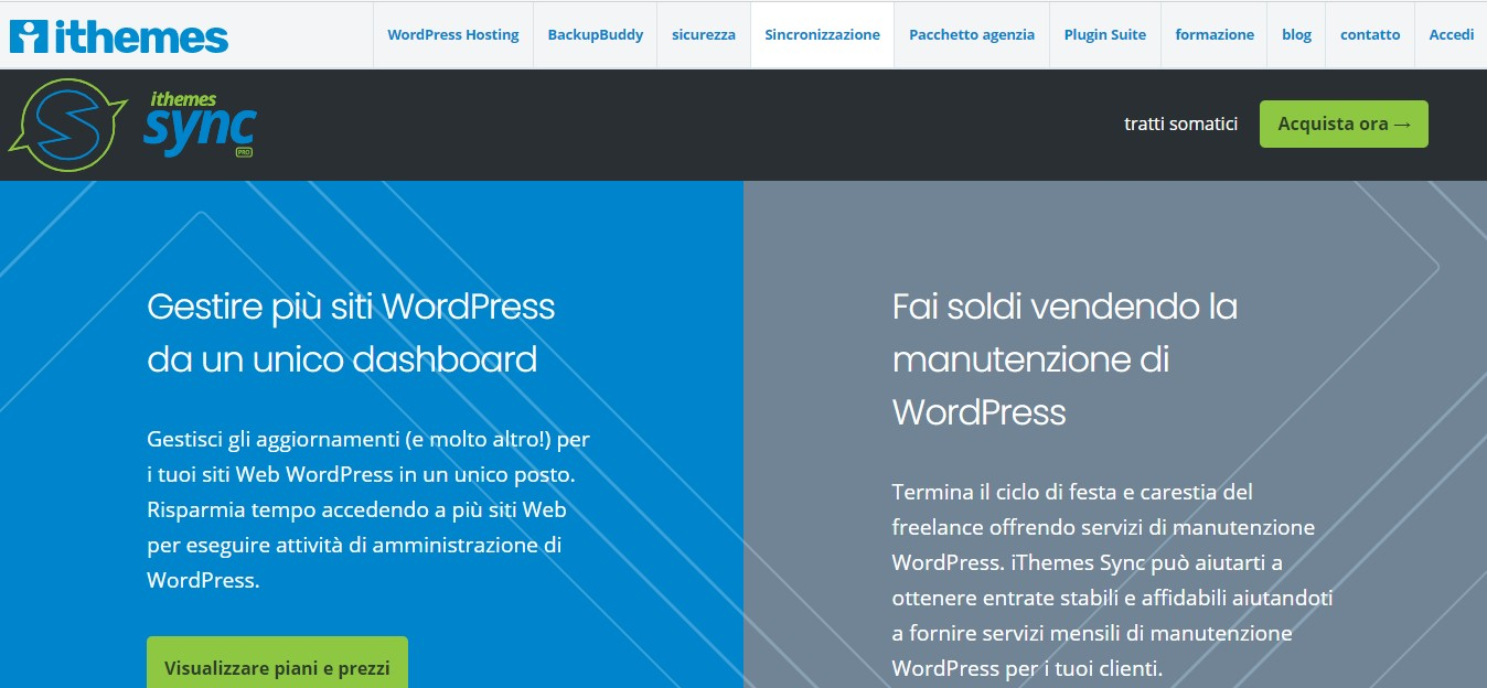 recensione ithemes